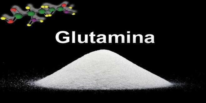 Glutamina: Suplementação inteligente